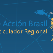 Regional Working Group for the Brazil Plan of Action